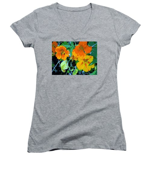Garden Flavor Women's V-Neck T-Shirt