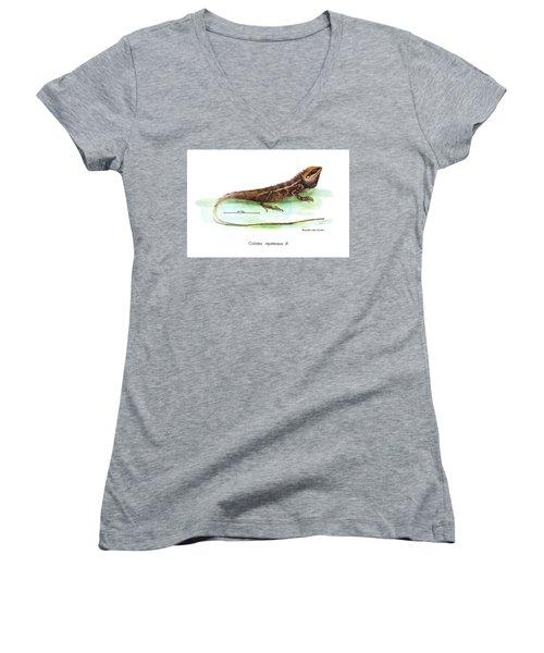 Women's V-Neck T-Shirt (Junior Cut) featuring the drawing Garden Lizard by Nguyen van Xuan