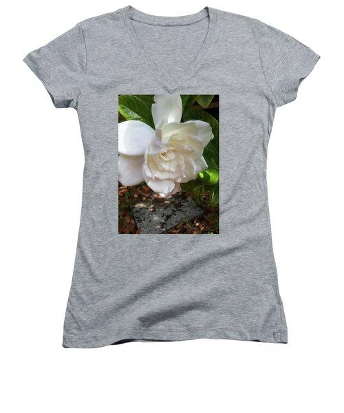 Women's V-Neck T-Shirt (Junior Cut) featuring the photograph Gardenia Blossom by Ginny Schmidt