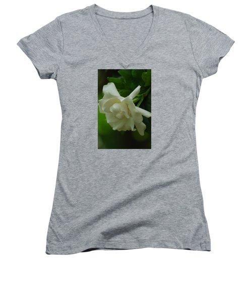Women's V-Neck T-Shirt (Junior Cut) featuring the photograph Gardenia by Ramona Whiteaker