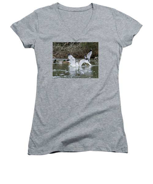 Women's V-Neck T-Shirt (Junior Cut) featuring the photograph Gathering Of Egrets by George Randy Bass