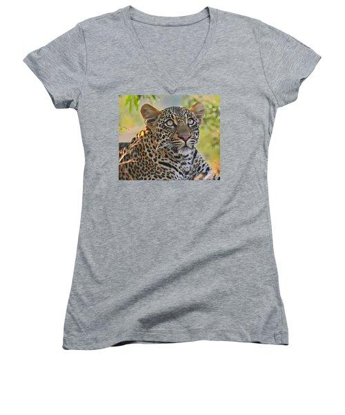 Gazing Leopard Women's V-Neck