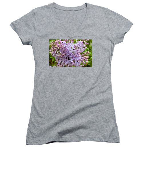 Gentle Purples Women's V-Neck