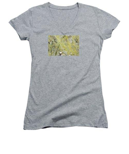 Gentle Weeds Women's V-Neck T-Shirt (Junior Cut) by Deborah  Crew-Johnson