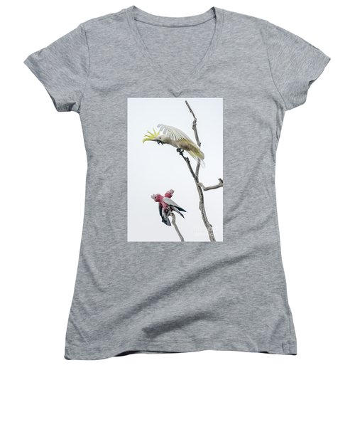 Get Off My Perch Women's V-Neck