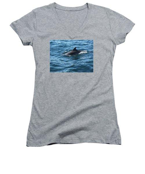 Gibraltar Dolphin  Women's V-Neck
