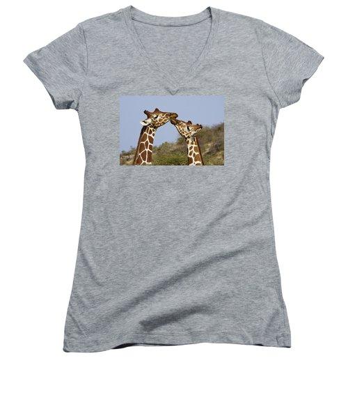 Giraffe Kisses Women's V-Neck (Athletic Fit)