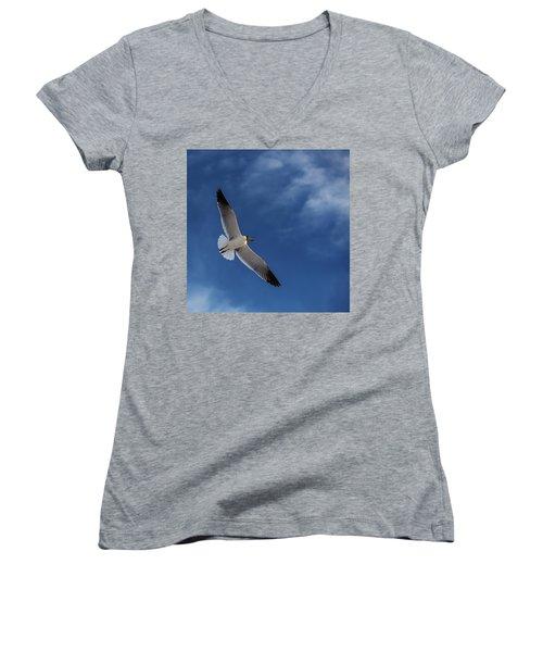 Glider Women's V-Neck T-Shirt (Junior Cut) by Don Spenner