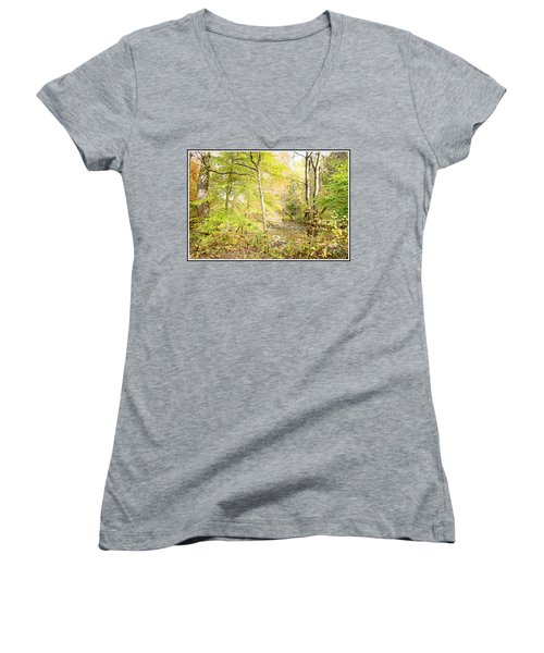 Glimpse Of A Stream In Autumn Women's V-Neck T-Shirt