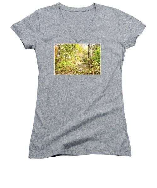Glimpse Of A Stream In Autumn Women's V-Neck T-Shirt