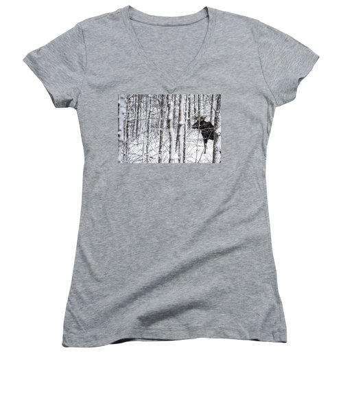 Glimpse Of Bull Moose Women's V-Neck