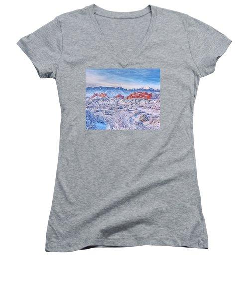Glorious Garden Women's V-Neck T-Shirt (Junior Cut) by Diane Alexander