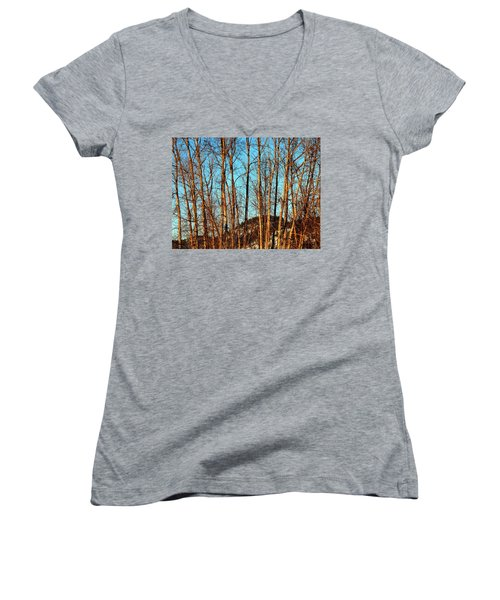 Glow Of The Setting Sun Women's V-Neck T-Shirt (Junior Cut) by Will Borden