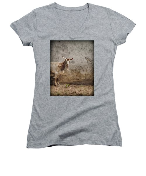 London, England - Goat Women's V-Neck