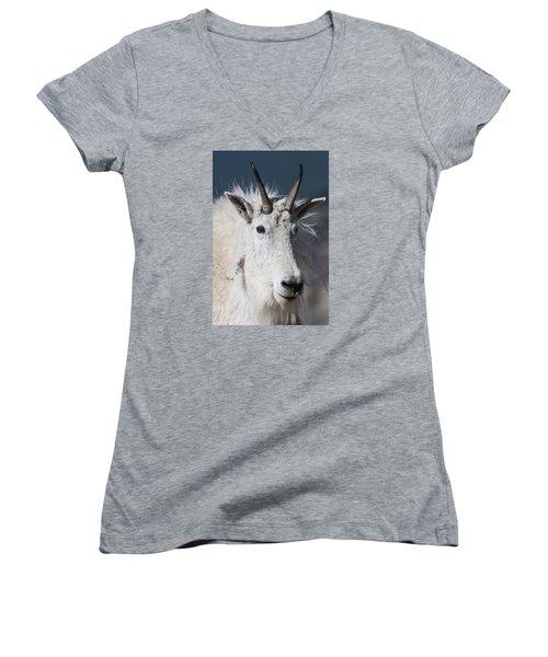 Goat Portrait Women's V-Neck T-Shirt (Junior Cut) by Gary Lengyel