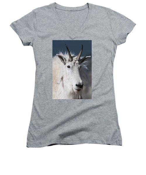 Goat Portrait Women's V-Neck