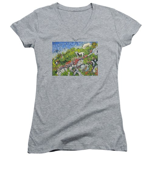 Goats On Hill Women's V-Neck T-Shirt (Junior Cut) by Michael Daniels