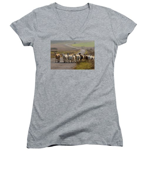 Goats Walking Home Women's V-Neck