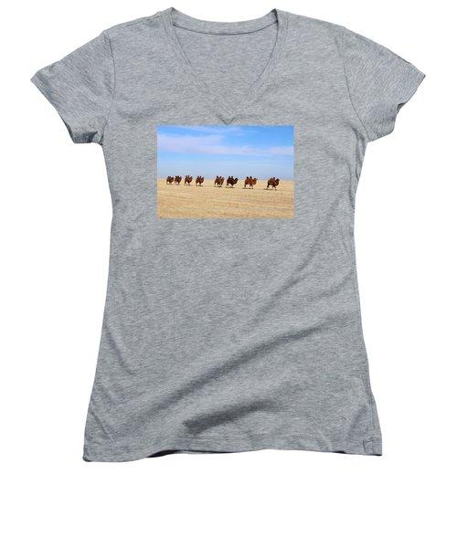 Gobi Camels Women's V-Neck T-Shirt (Junior Cut) by Diane Height