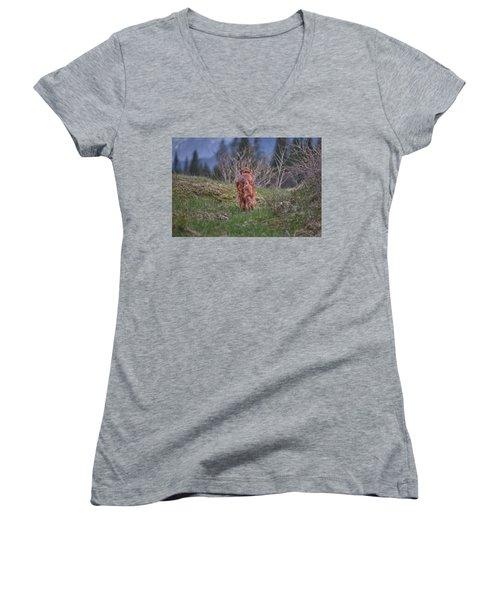 Going Home Women's V-Neck T-Shirt (Junior Cut) by Robert Krajnc