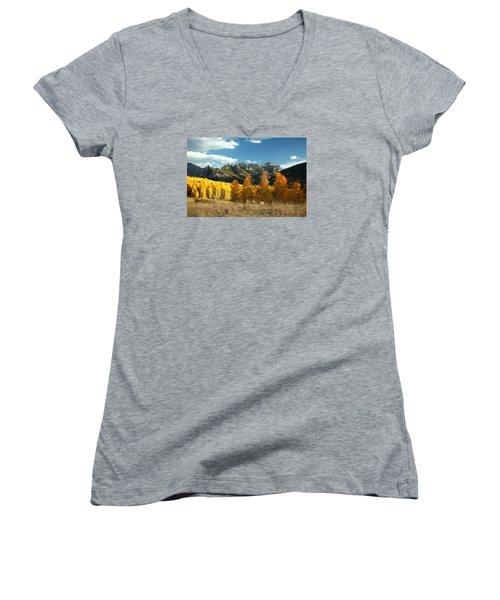 Gold At Their Feet Women's V-Neck T-Shirt