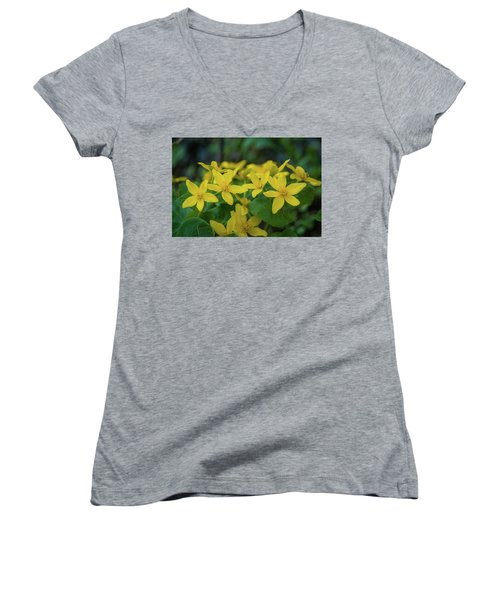 Women's V-Neck T-Shirt (Junior Cut) featuring the photograph Gold In The Marsh by Bill Pevlor