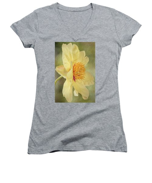 Golden Bowl Tree Peony Bloom - Profile Women's V-Neck T-Shirt (Junior Cut) by Patti Deters