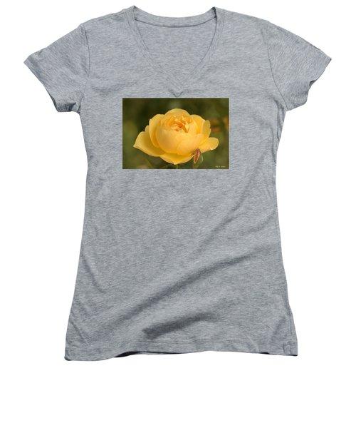 Golden Breath Women's V-Neck T-Shirt (Junior Cut) by Amy Gallagher