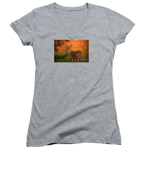 Golden Buck Women's V-Neck T-Shirt (Junior Cut) by Geraldine DeBoer
