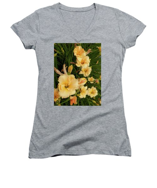 Golden Day Lilies Women's V-Neck T-Shirt