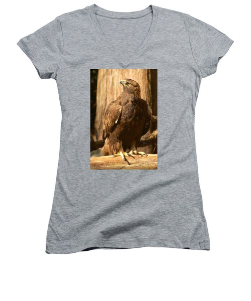 Golden Eagle Women's V-Neck T-Shirt (Junior Cut) by Sean Griffin