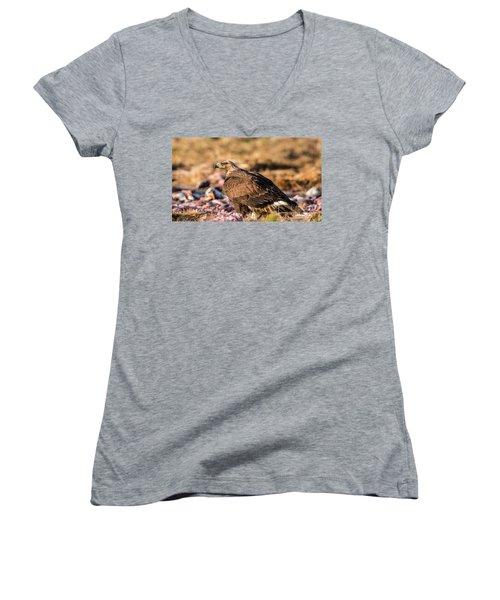 Golden Eagle's Back Women's V-Neck T-Shirt (Junior Cut) by Torbjorn Swenelius