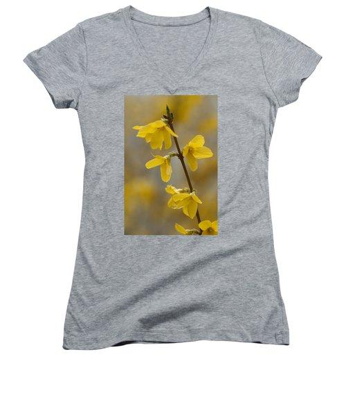 Golden Forsythia Women's V-Neck T-Shirt