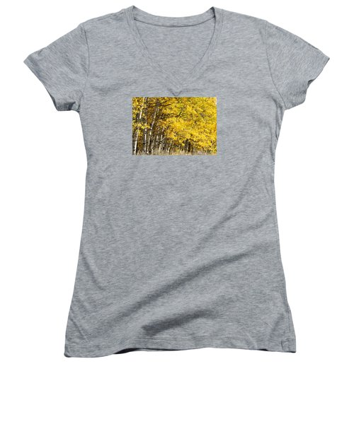 Golden II Women's V-Neck T-Shirt