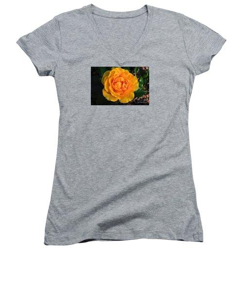 Golden Memories Women's V-Neck T-Shirt