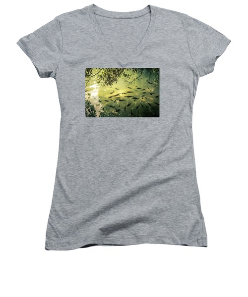 Golden Pond With Fish Women's V-Neck T-Shirt (Junior Cut) by Menachem Ganon
