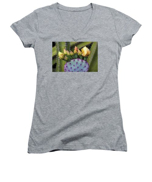Women's V-Neck T-Shirt featuring the photograph Golden Prickly Pear Buds  by Saija Lehtonen