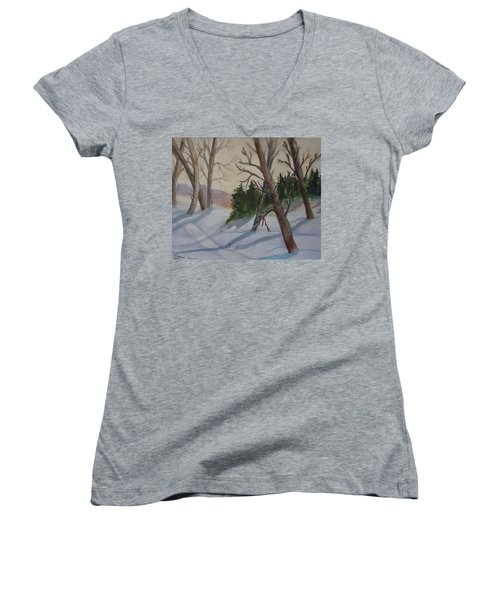 Golden Sky In The Snow Women's V-Neck T-Shirt