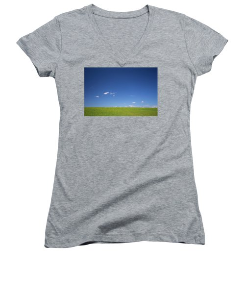 Golden Yellow Of Big Wheat Field,meadows And Closeup Seed With B Women's V-Neck T-Shirt (Junior Cut) by Jingjits Photography