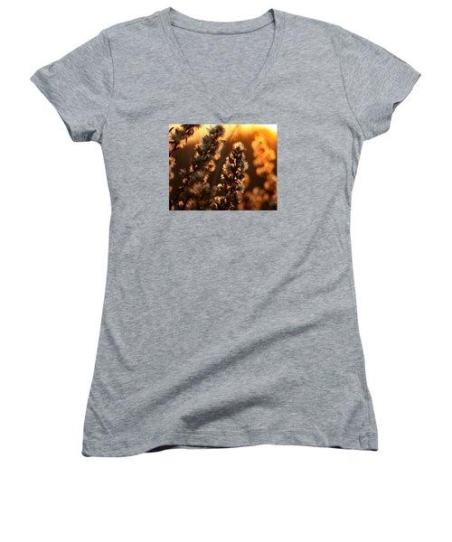 Goldenrod At Sunset Women's V-Neck T-Shirt