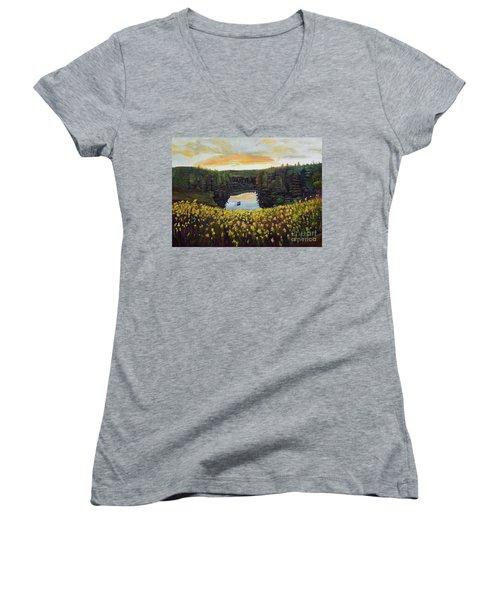 Goldenrods On Davenport Lake-ellijay, Ga  Women's V-Neck T-Shirt (Junior Cut) by Jan Dappen
