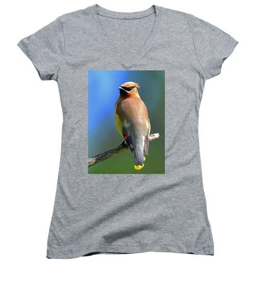 Gorgeous Cedar Waxwing Women's V-Neck T-Shirt (Junior Cut) by Rodney Campbell