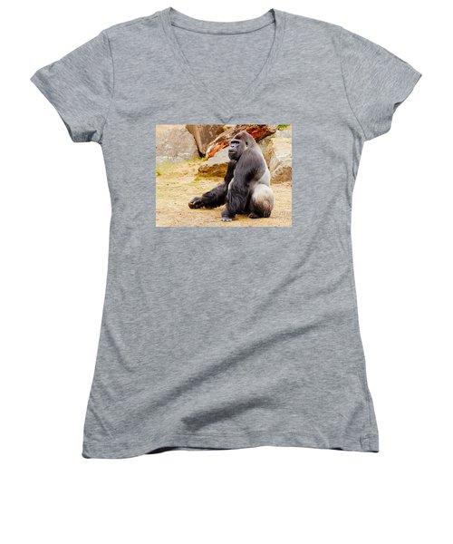 Gorilla Sitting Upright Women's V-Neck (Athletic Fit)