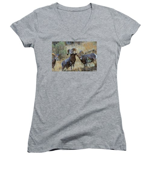 Got An Itch... Women's V-Neck (Athletic Fit)