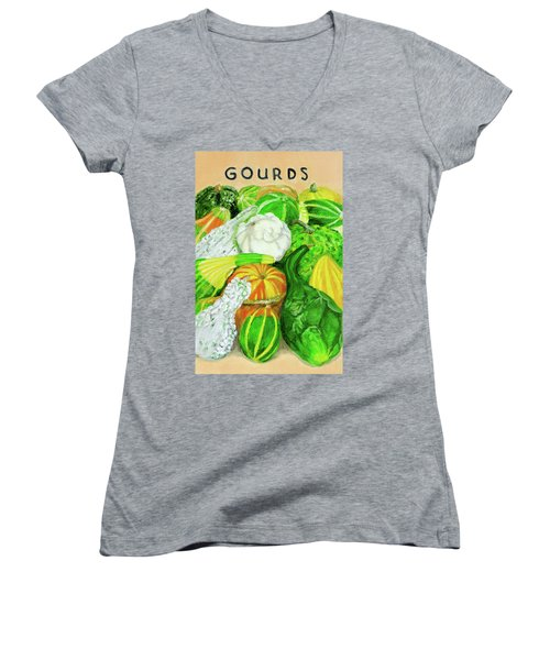 Gourd Seed Packet Women's V-Neck T-Shirt