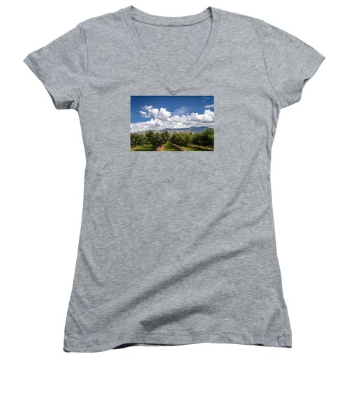 Grand Valley Orchards Women's V-Neck T-Shirt (Junior Cut) by Teri Virbickis