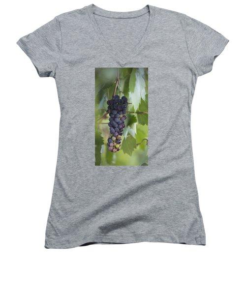 Grape Fruit Women's V-Neck T-Shirt