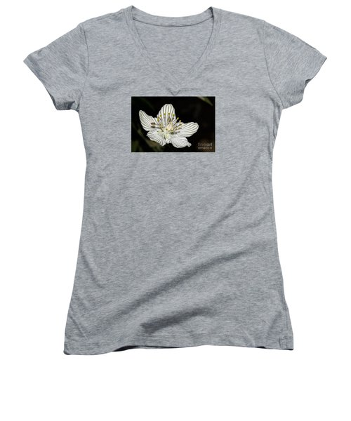 Grass Of Parnassus Women's V-Neck T-Shirt (Junior Cut) by Barbara Bowen