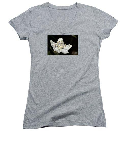 Grass Of Parnassus Women's V-Neck T-Shirt