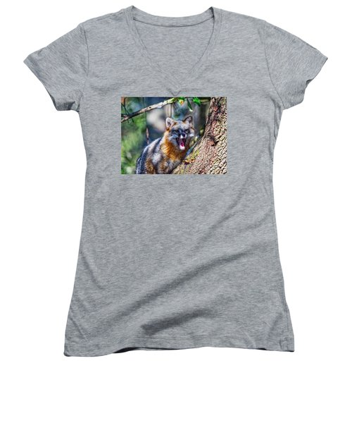 Gray Fox Awakens In The Tree Women's V-Neck (Athletic Fit)